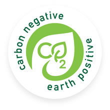 carbon negative earth positive